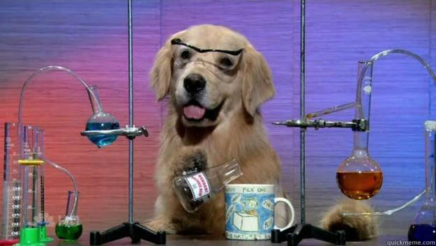 Chemistry Dog