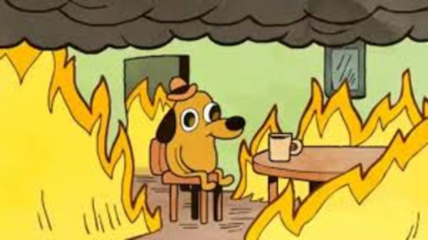 This is fine - surviving 2020